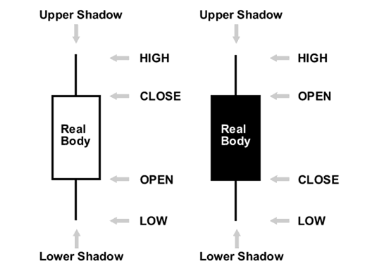 How to read a chart in forex?