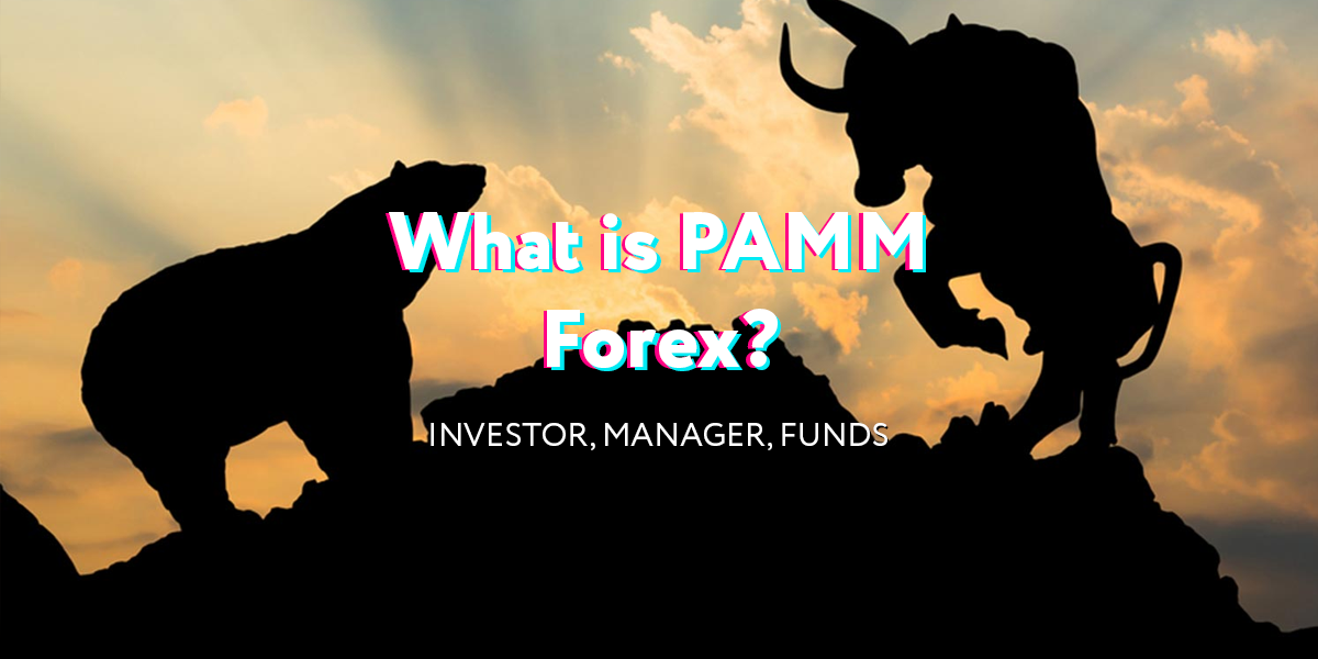 What is pamm in forex